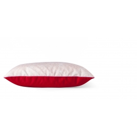 Volutes - Coussin